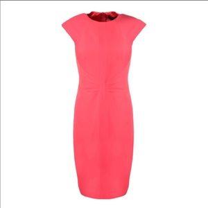 NWT Ted Baker Acerola Panel Pencil Skirt Dress